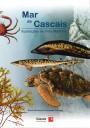 Mar de Cascais : ilustrações de vida marinha